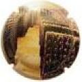 ROSMAS 13198 X 4761 V collita 01*