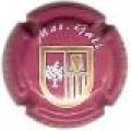 MAS GALI  47075 x 14662 v