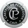 CASTELO DE PEDREGOSA 50825 x 15558 v
