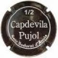 CAPDEVILA PUJOL 1/2 8023 x 5469 v